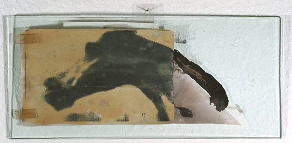 Charakter Studie/1988/übermalte Fotokopie, PattexlasurTesa auf und hinter Glas/23x11cm/ | Klaus Fabricius | Artist Künstler | Information