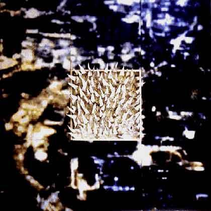 Gadda-Da-Vida II/1998/ Fotografie Print Collage und Blei/240 x 240x12cm | Klaus Fabricius | Artist Künstler | Information