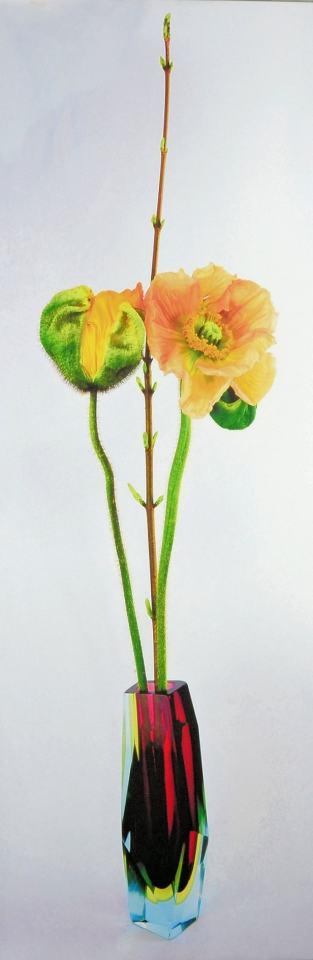 Portrait Blüten/2017/Foto Print/120x40cm | Klaus Fabricius | Artist Künstler | Information