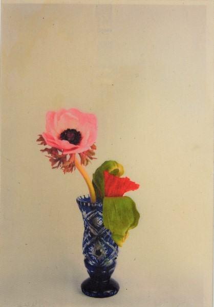 Portrait Blüten/...in stiller Freundschaft...2017 | Klaus Fabricius | Artist Künstler | Information